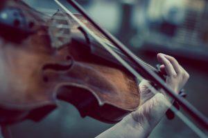 gestimmte geige violine